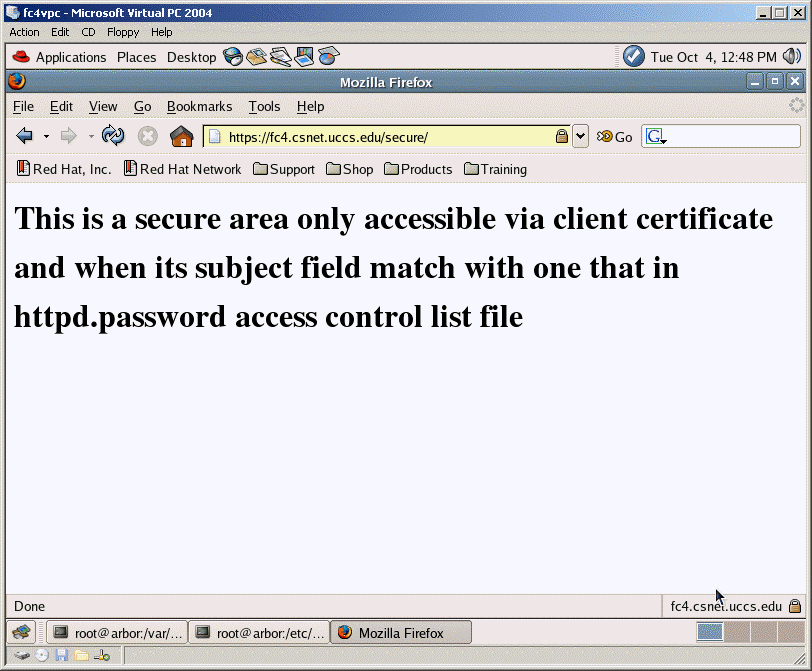 Secure web access with client certificate